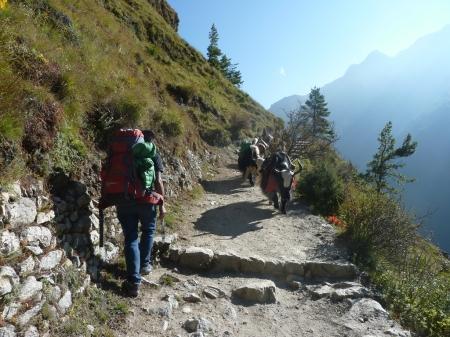 Mountainspace - spedizione lobuche nepal 2012 P1080415