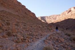 Giacomino longhi - marocco sci deserto dune trekking IMG_1857
