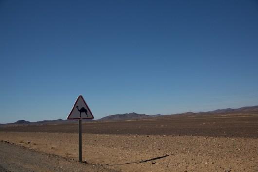 Giacomino longhi - marocco sci deserto dune trekking IMG_2310