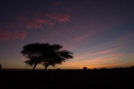 Giacomino longhi - marocco sci deserto dune trekking IMG_2373