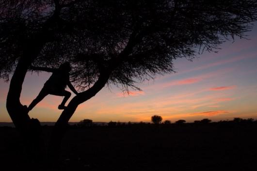 Giacomino longhi - marocco sci deserto dune trekking IMG_2377