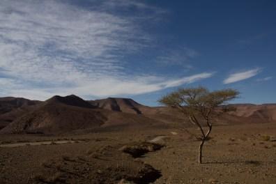 Giacomino longhi - marocco sci deserto dune trekking IMG_2403