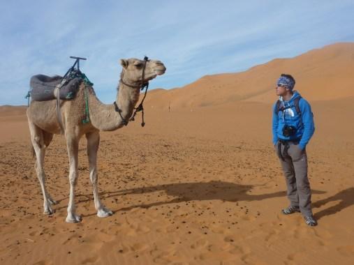 sci nel deserto dune sabbia snowboard P1100111